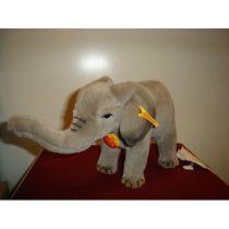 Elefant Eli