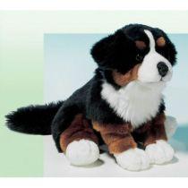 Hund: Berner Sennen